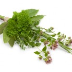 A home-made bouquet garni made with fresh herbs is a powerful flavour-building tool. Photo source: iStockPhoto