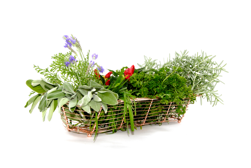 Basket with freshly harvested herbs and spices.